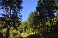 水分れ公園:標高わずか95mという、日本一低い谷中中央分水界にある公園。